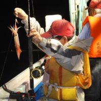 手ぶらでOK! 船上からのイカ釣り体験